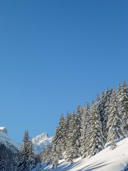 Courchevel 1650