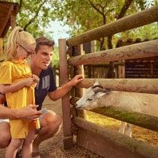 La ferme pour enfants