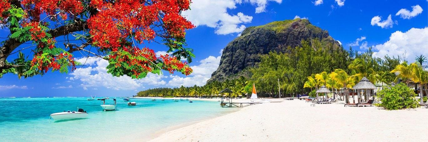Panoramic visual Mauritius