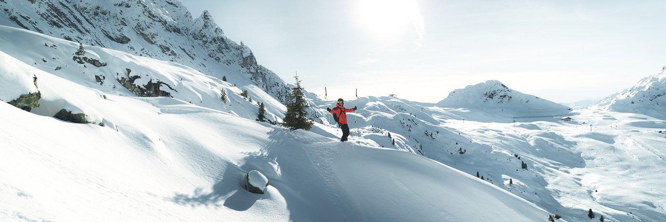 Vista panoramica Alpi