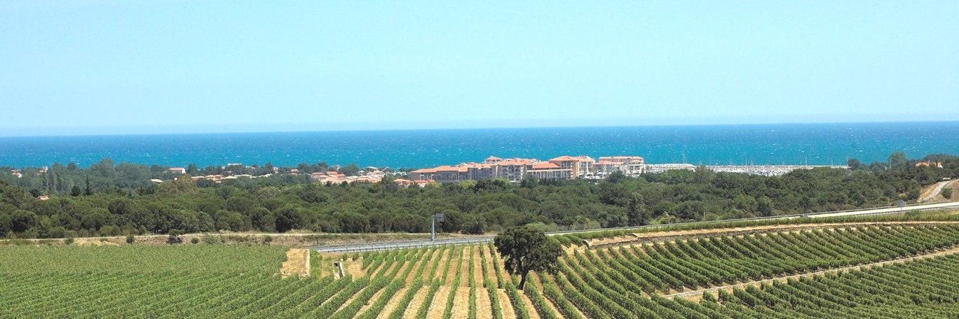 Panoramisch uitzicht Argelès-sur-Mer