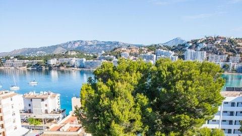 Apartamentos Mallorca Portofino